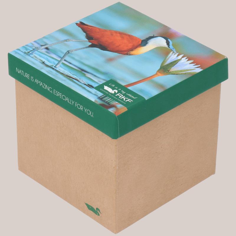 Calcetin-Bambu-Mujer-Pack-Bird