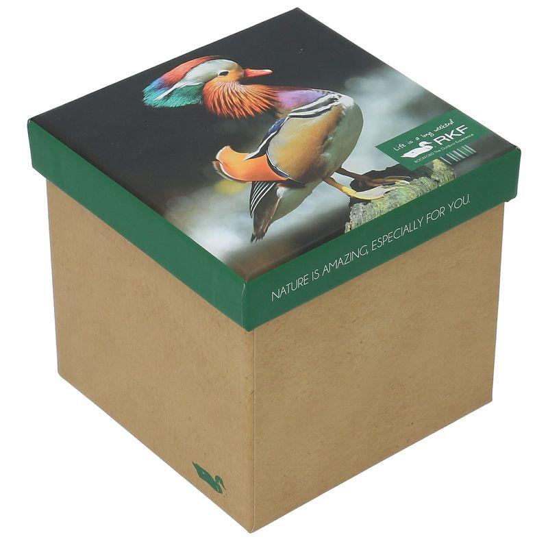 Calcetin-Bambu-Mujer-Pack